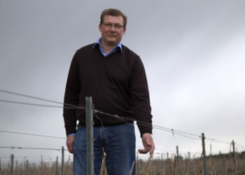 Philippe Paques in Champagne Vineyards.w437