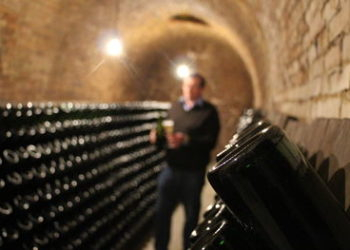 Philippe Paques in his Champagne Cellars.h262